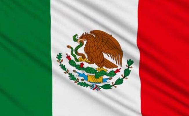 Meksika'da mantar zehirlenmesinden 5 kişi öldü