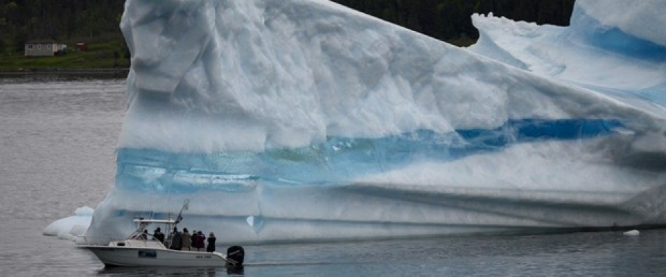 """BM'den iklim değişikliği için """"acil"""" çağrısı"""