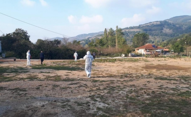 İznik'te kuyuya atılmış ve gömülmüş tavuklar bulunması