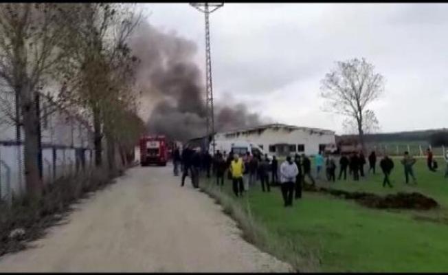 Çatalca'da fabrikada yangın