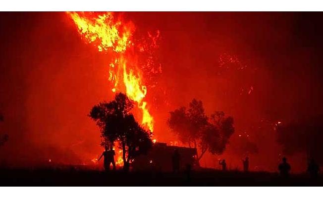 Orada 2019 yılında 52 orman yangını çıktı