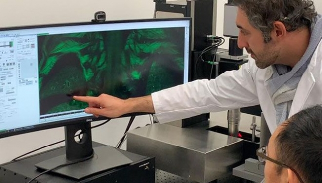 Hücresinin tespitini yapabilen algoritma geliştirildi