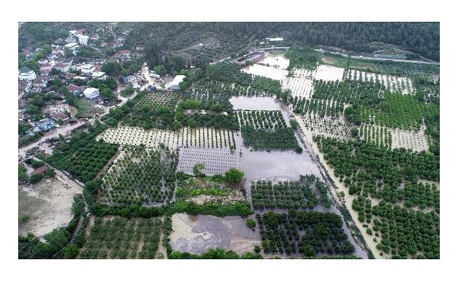 Dolu ve sel, tarlalarda 10 milyon TL zarara neden oldu