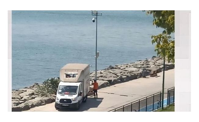 CHP'li İBB'den Florya sahilinde ağaç kıyımı
