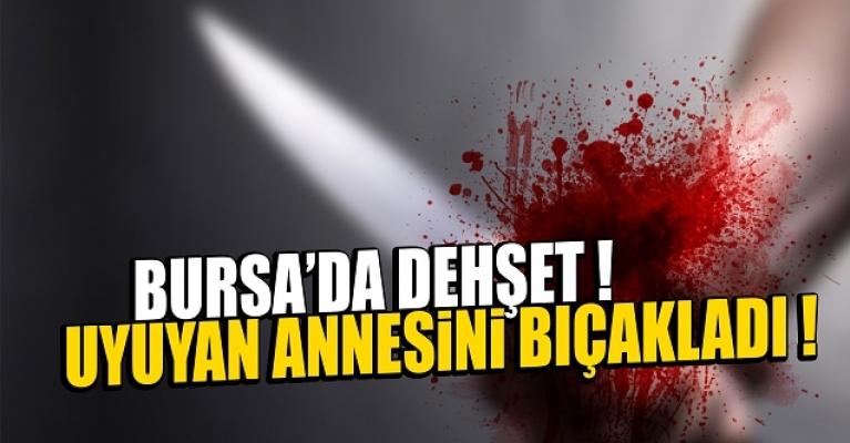Bursa'da annesini uykuda bıçaklayıp, koynundaki 600 lirayı alıp kayıplara karıştı