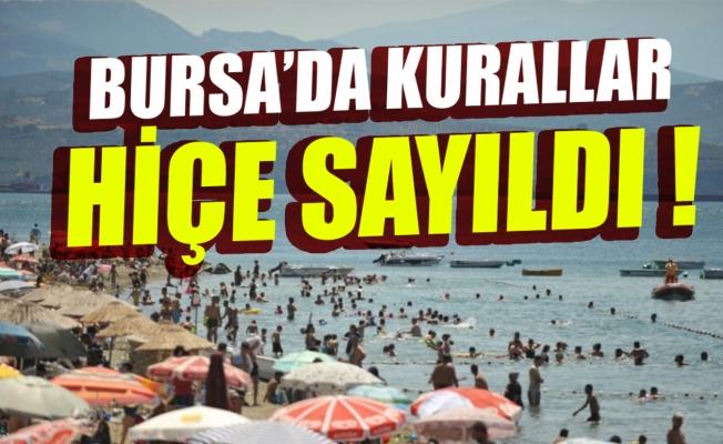 Bursa Kumla'da kurallar hiçe sayıldı