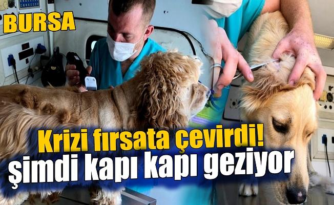 Kapı kapı gezerek hayvanları tıraş ediyor