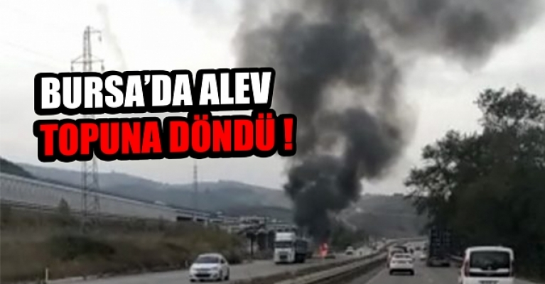 Bursa İstanbul karayolundaki tır alev alev yandı