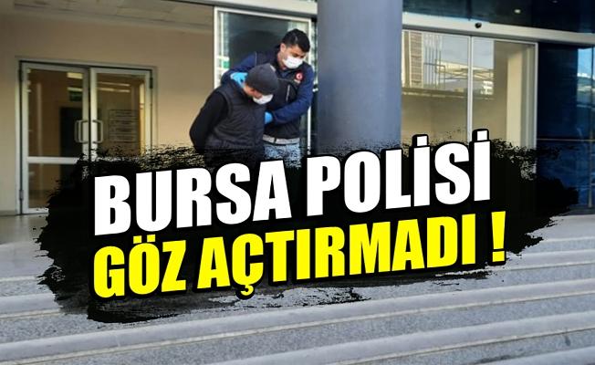 Bursa'da 10 kilo bonzai ile yakalandı