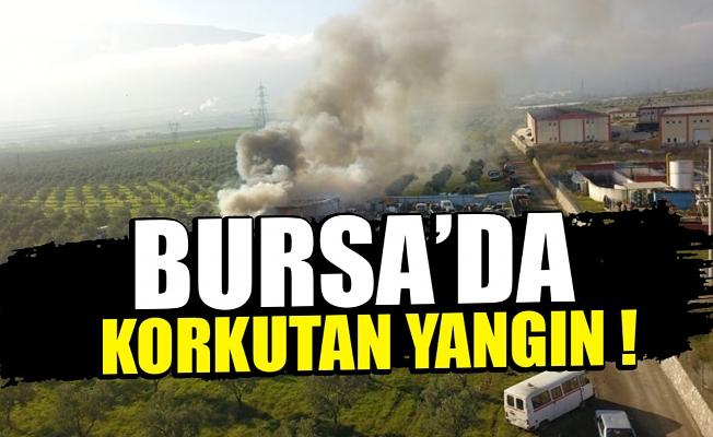 Bursa'da geri dönüşüm deposunda korkutan yangın