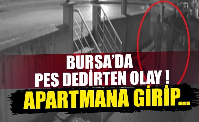Bursa'da motosiklet hırsızlığı güvenlik kamerasında!