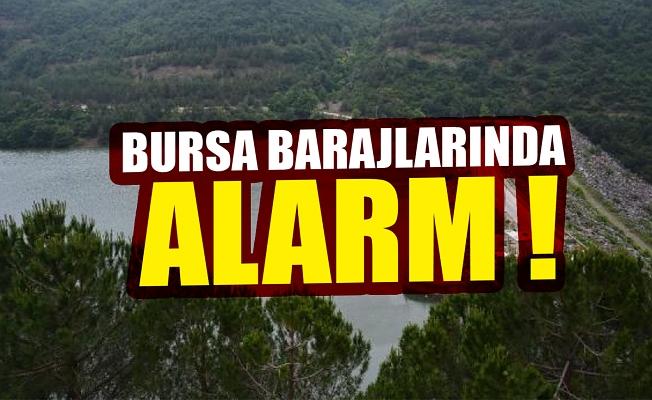 Bursa'nın barajlarında alarm !