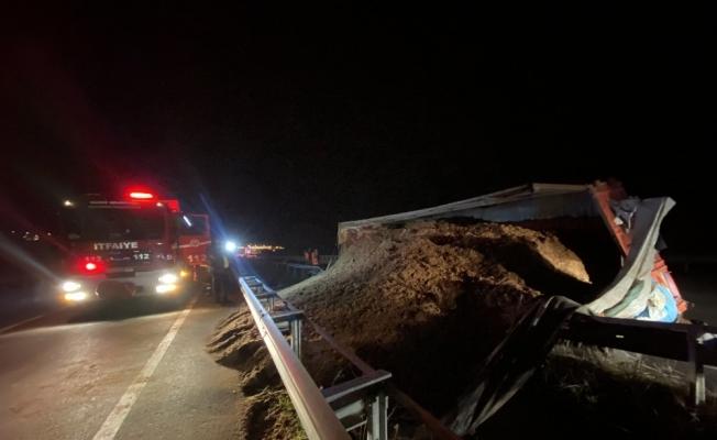 Düzce'de talaş yüklü kamyon devrildi sürücüsü yaralındı