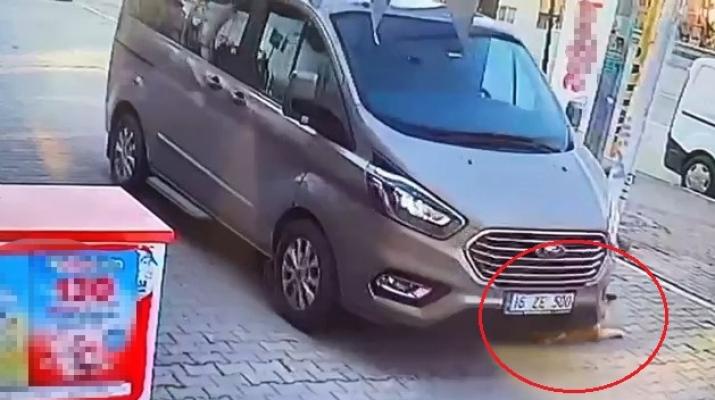 Bursa'da aracıyla köpeği ezip kaçtı!
