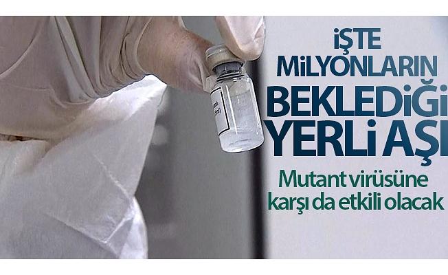 İşte milyonların beklediği yerli aşı