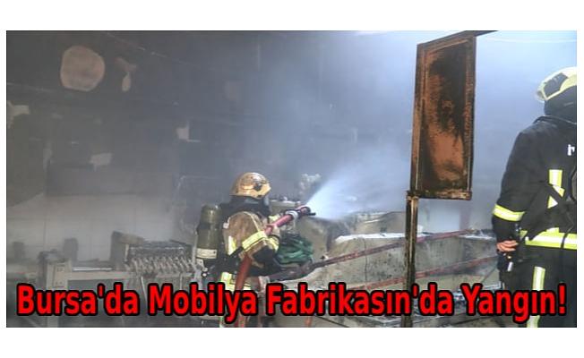 Bursa'da, mobilya fabrikasının kimyasal madde deposunda yangın