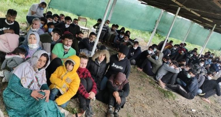 MSB: 81 düzensiz göçmen kurtarıldı