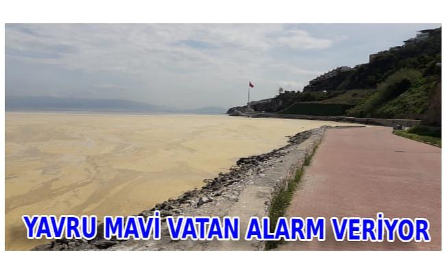 YAVRU MAVİ VATAN ALARM VERİYOR