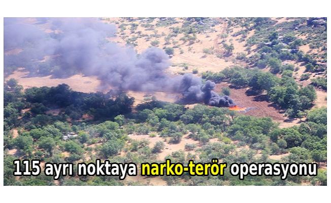 115 ayrı noktaya narko-terör operasyonu; 2,5 milyon kök kenevir imha edildi