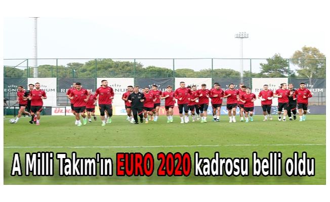 A Milli Takım'ın EURO 2020 kadrosu belli oldu