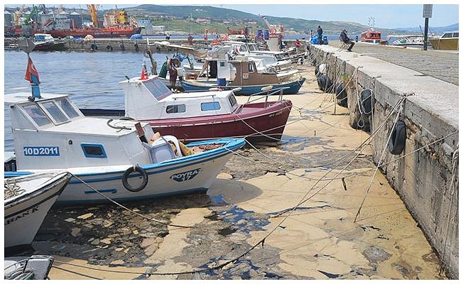 Bakan Pakdemirli: Marmara'da kıyı balıkçısına desteği 2 katına çıkardık