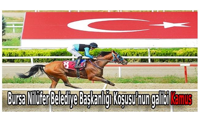 Bursa Nilüfer Belediye Başkanlığı Koşusu'nun galibi Kamus