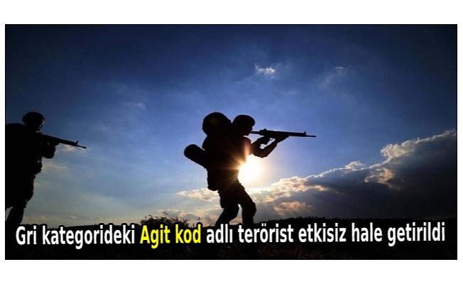 Gri kategorideki Agit kod adlı terörist etkisiz hale getirildi