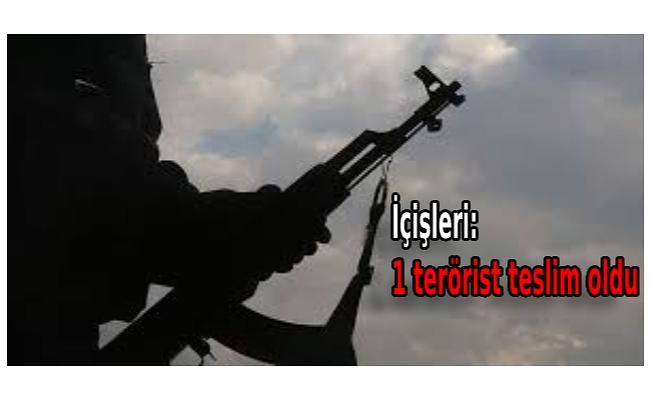 İçişleri: 1 terörist teslim oldu