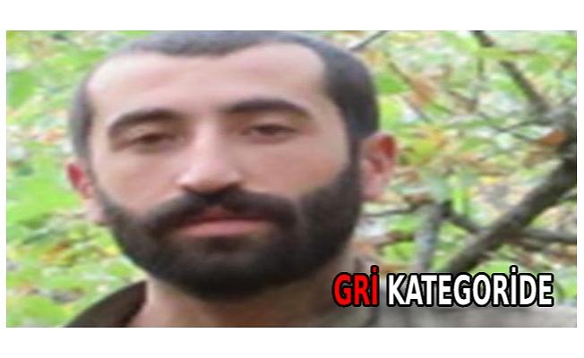 İçişleri: Bitlis'te etkisiz hale getirilen 3 teröristten 1'i 'gri' kategoride
