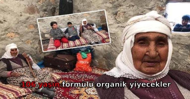 106 yaşın formülü organik yiyecekler