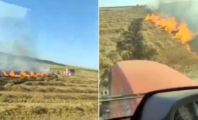 400 kovan arı, anız yangınından son anda kurtarıldı