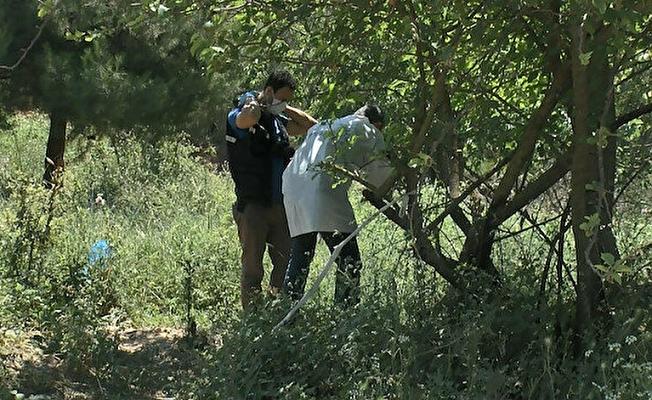 Bursa'da tarla kenarında karton kutuda bebek cesedi bulundu