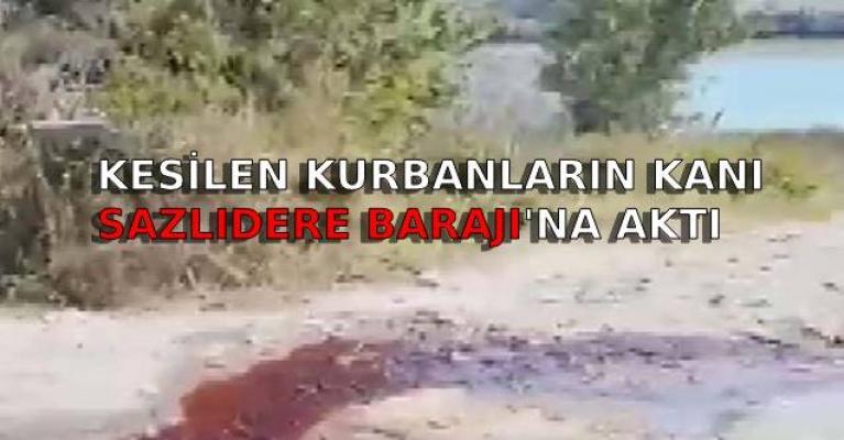 Kesilen kurbanların kanı sazlıdere barajı'na aktı