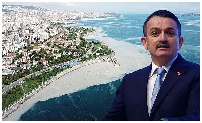Marmara Denizi'nden çıkan balık yenir mi? Bakan Pakdemirli yanıtladı