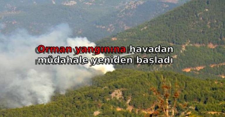 Orman yangınına havadan müdahale yeniden başladı