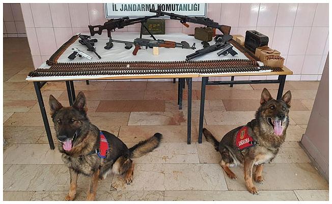 Tabut içinde silahlar ele geçirildi: 2 gözaltı