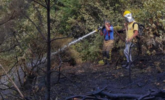 İnegöl'de çıkan orman yangını 1 saatte söndürüldü
