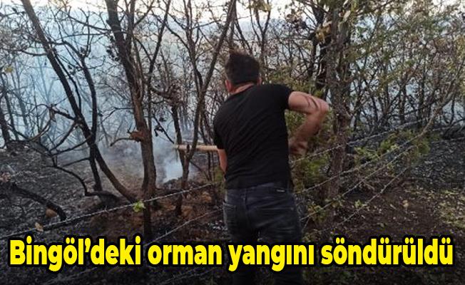 Bingöl'deki orman yangını söndürüldü