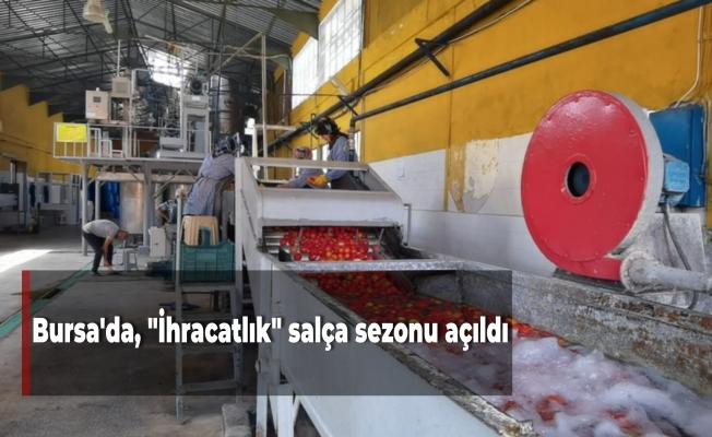 """Bursa'da, """"İhracatlık"""" salça sezonu açıldı"""