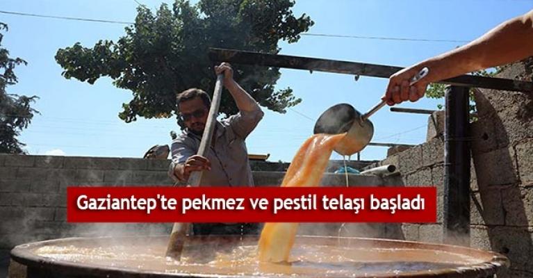 Gaziantep'te pekmez ve pestil telaşı başladı