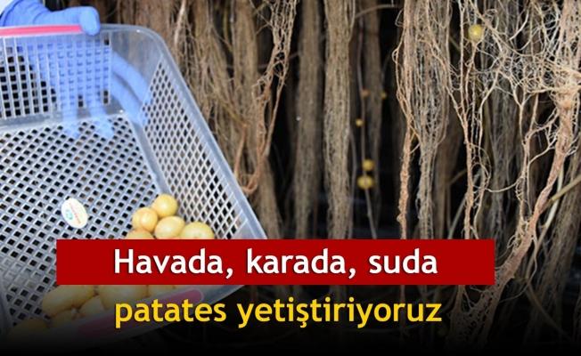 'Havada, karada, suda patates yetiştiriyoruz'