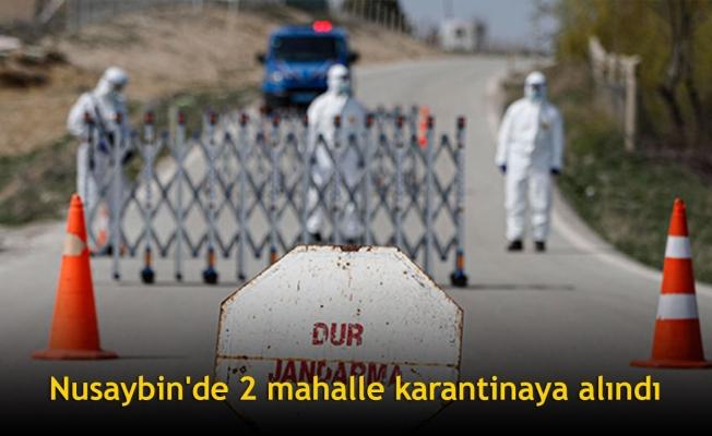 Nusaybin'de 2 mahalle karantinaya alındı