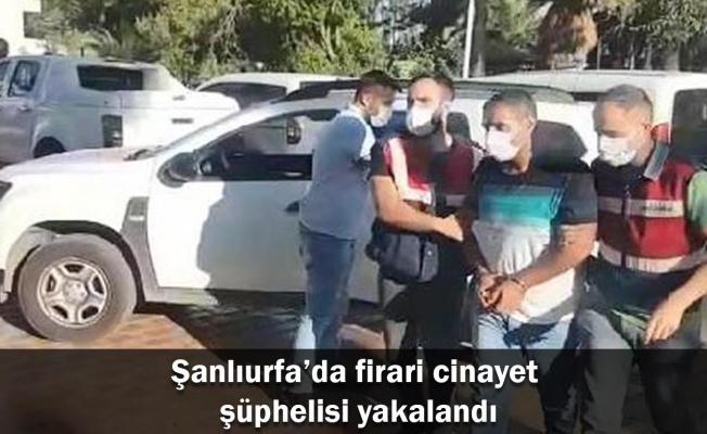Şanlıurfa'da firari cinayet şüphelisi yakalandı