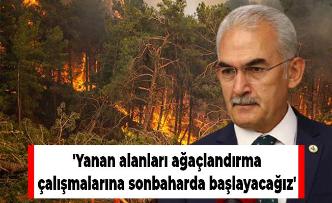 'Yanan alanları ağaçlandırma çalışmalarına sonbaharda başlayacağız'