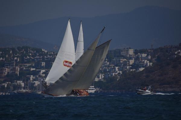 'Bodrum Cup' heyecanı başladı; yelkenler yangında zarar gören bölgelere açıldı (2)