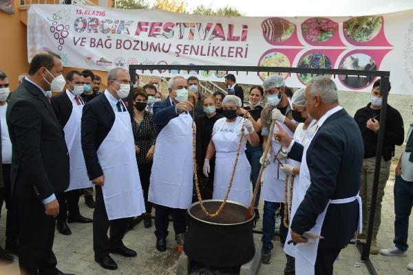 Elazığ'da 15'inci 'Orcik Festivali ve Bağbozumu Şenlikleri'