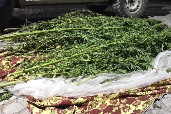 Hevsel Bahçeleri'ne uyuşturucu operasyonu: 4 gözaltı