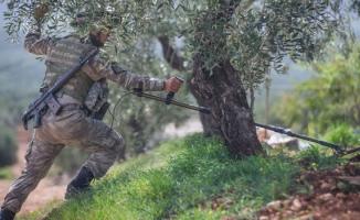 Mehmetçik Afrin'de EYP ve mayın avında