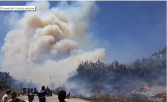 Bursa'da korkunç yangın