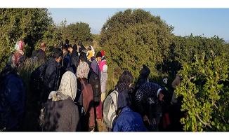 91 mülteci yakalandı